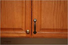 Best Kitchen Cabinet Hinges New Cabinet Hinges Hardware Fzhld Net
