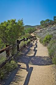 Bench Trail 10 Best Viewpoint Trail Treetop Walkway Images On Pinterest