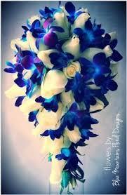 blue and purple flowers best 25 blue and purple flowers ideas on blue purple
