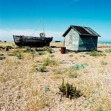 plunge into dungeness and get close to nature on the kent coast
