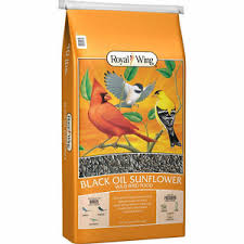 royal wing black oil sunflower wild bird food 40 lb at tractor