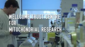 wellcome trust centre for mitochondrial research newcastle uk