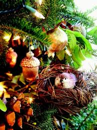 Pictures Of Christmas Trees Decorated With Birds by Christmas Tree Decorating Ideas Bay Leaves Pinecone And