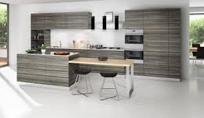 contemporary kitchen cabinets modern kitchen cabinets orlando contemporary kitchens
