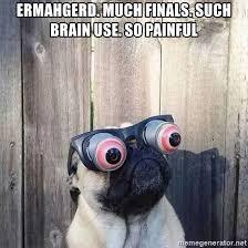 Ermahgerd Meme Maker - ermahgerd pug meme generator mne vse pohuj