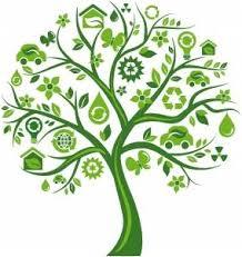 tree recycling hawaii tree service company