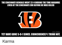Cincinnati Bengals Memes - the cincinnati bengals went 22 9 during the time harambe lived at