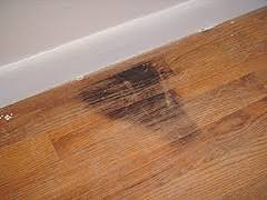 sanding hardwood flooring with the varathane ezv random
