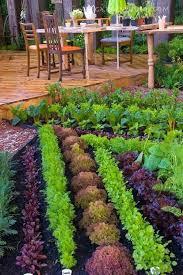 edible landscape design ideas aloin info aloin info