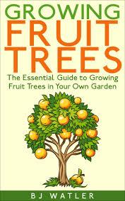 117 best all kinda fruit plants images on pinterest fruit plants