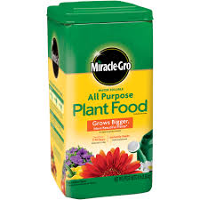 flower food packets miracle gro water soluble all purpose plant food walmart