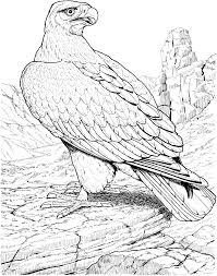 free eagle coloring pages