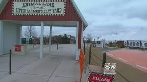 Pumpkin Farms In Wisconsin Dells by Bear Cub U0027s Death At Goebbert U0027s Farm Sparks Boycott Call Chicago