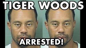 Tiger Woods Meme - tiger woods arrested for drunk driving golf career now over