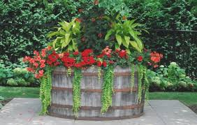 Container Flower Gardening Ideas Container Gardening Ideas For Flowers Home Design And Decorating