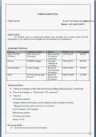 Resume Title Examples For Mba Freshers by Resume Format For Mba Freshers In Finance Resume Format