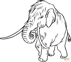 mammoth baby coloring page free printable coloring pages