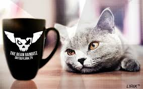 post your mug ideas here u0027s mine no trolling ples datguylirik