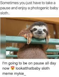 Sloth Meme Images - 25 best memes about sloth meme sloth memes