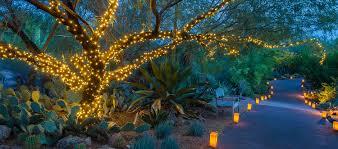 Zoo Lights Phoenix Arizona by Zoolights