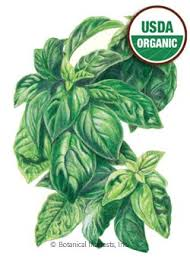 flower food packets herb seeds herb seed packets heirloom organic more