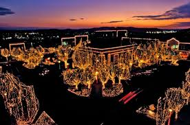 lights of the ozarks things to do in fayetteville arkansas