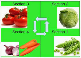 crop rotation system 9 crop families and a guide to vegetable