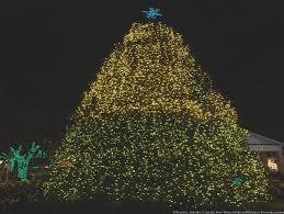 christmas tree lighting boston 2017 boston s first and tallest tree lighting at faneuil hall