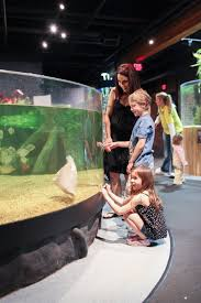 top 10 things to do with kids in cleveland midwest living