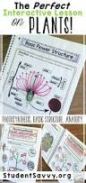 best 25 photosynthesis activities ideas on pinterest