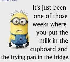 Funny Minion Memes - funny minion meme 99gap com