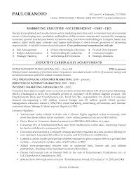 Senior Finance Executive Resume Product Marketing Resume Best Free Resume Collection