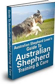australian shepherd iphone 4 case guide to australian shepherd training u0026 care
