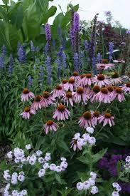716 best garden images on pinterest