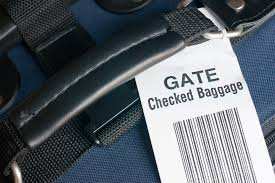 united checked bag why pay united checked baggage fees when young passengers get it for