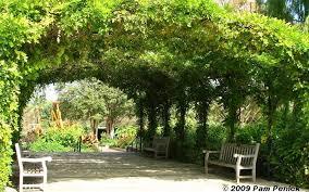 San Antonio Botanical Gardens Events Field Trip San Antonio Botanical Garden Digging