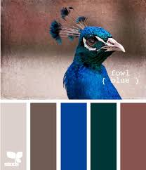 fowl blue idea board pinterest peacocks design seeds and