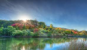 Mt Lofty Botanic Gardens Mount Lofty Botanic Garden Bec Callahan Flickr