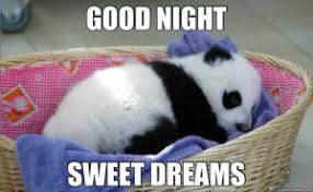 Sweet Memes - hilarious good night meme