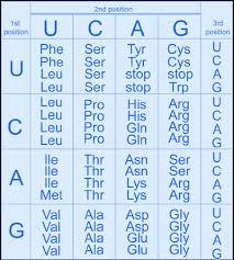 genome dictionary genetics glossary g