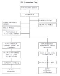 electrical engineering department organizational structure