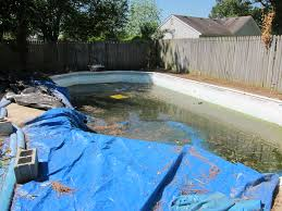 new swimming pools officialkod com