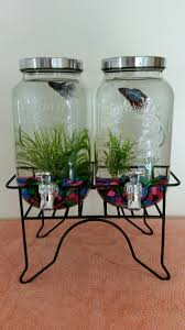 how to make fish tank decorations at home diy drink dispenser fish tank random bits and pieces pinterest