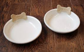 brightnest dog bowls u0026 11 other things to clean in the dishwasher