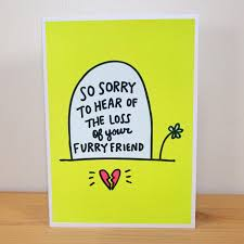 buy pet sympathy pet loss card angela