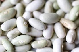 comment cuisiner les haricots blancs cuisson des haricots blancs rouges recettes quellecuisson com