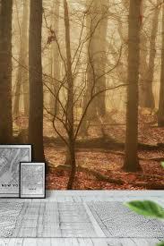 90 best forest wall murals images on pinterest wallpaper designs autumn woods wall mural wallpaper