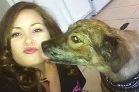 australian shepherd las vegas nevada law sought to reduce unnecessary dog shootings by police