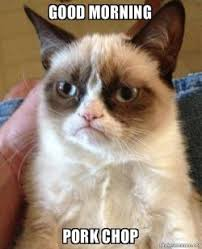 good morning pork chop grumpy cat make a meme