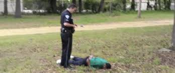 Image result for walter scott shooting